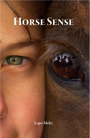 Horse Sense Cover Final vbr15